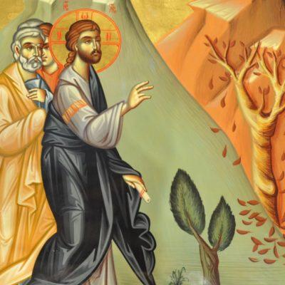 Зачем Христос проклял смоковницу?