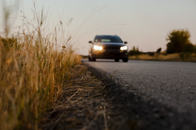 Случай на дороге (сказка-быль)
