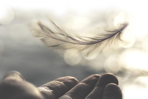 Некоторые святоотеческие суждения о творении индивидуальных человеческих душ